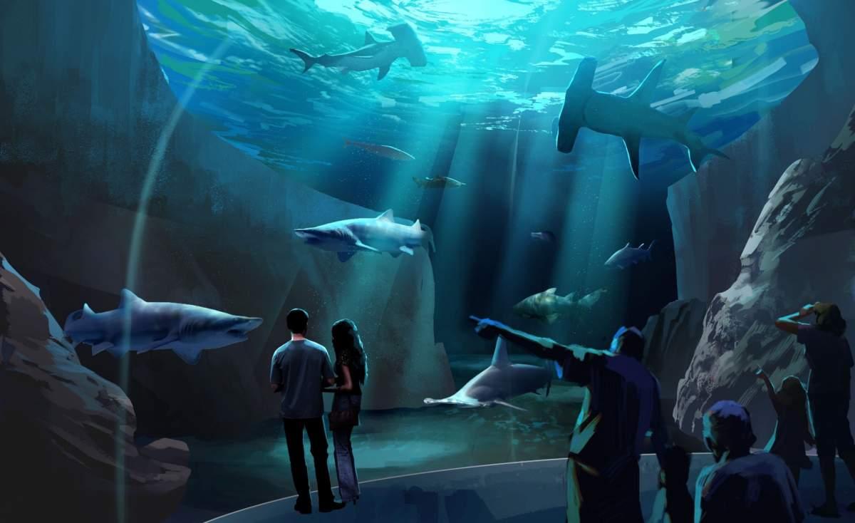 Sharks Take Over At Georgia Aquarium Oculus Light Studio